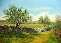 Kristina Valić, Olive trees