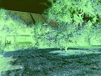 Eva-Caroline-Dornach-Decorative-Art-Interiors-Gardens-Contemporary-Art-Contemporary-Art