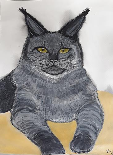 Marie Ruda, Katze Maine Coon., Miscellaneous Animals, Animals, Realism