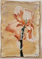 Marie-Ruda-Plants-Flowers-Plants-Flowers-Modern-Times-Realism