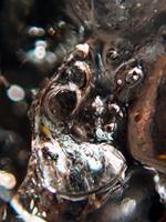 Andrea-Kasper-1-Abstract-art-Nature-Water-Contemporary-Art-Contemporary-Art