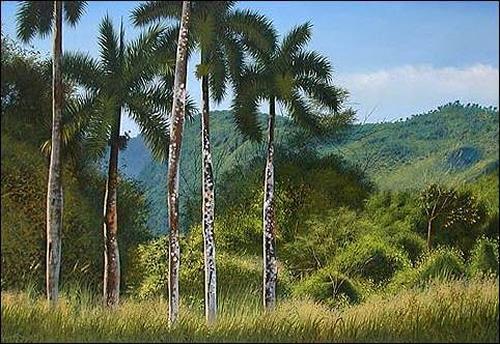 Eduardo Estrada, A orillas del recodo, Miscellaneous Landscapes, Plants: Palm