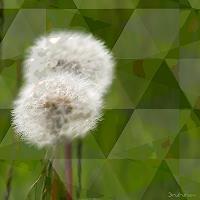 Dieter-Bruhns-Movement-Nature-Miscellaneous-Contemporary-Art-Contemporary-Art