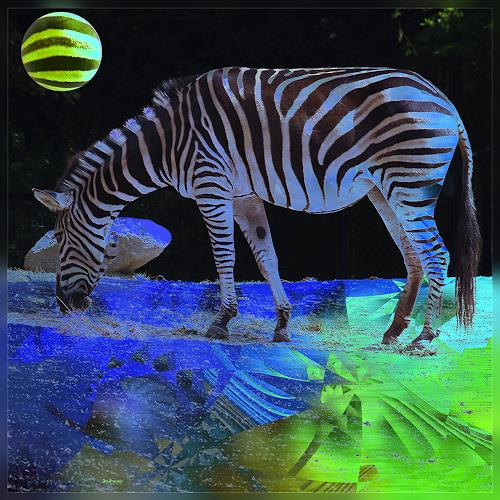 Dieter Bruhns, Zebra, Animals: Land, Fantasy, Contemporary Art, Abstract Expressionism