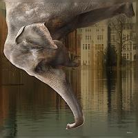 Dieter-Bruhns-Animals-Air-Animals-Water-Contemporary-Art-Contemporary-Art