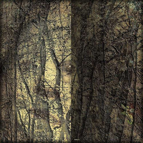 Dieter Bruhns, Looking from the Past, Landscapes, Abstract Art