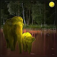 Dieter-Bruhns-Animals-Modern-Age-Abstract-Art