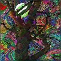 Dieter-Bruhns-Plants-Modern-Age-Abstract-Art