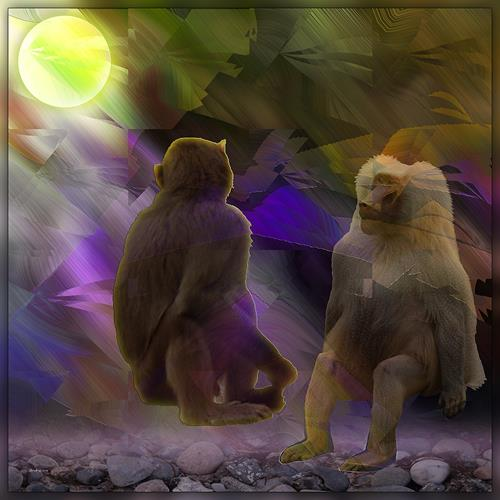 Dieter Bruhns, Apes in the Moonlight, Animals, Abstract Art