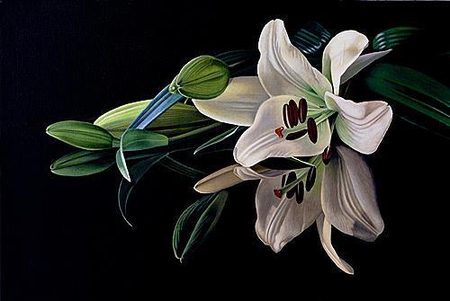 Dietrich Moravec, Sein und Schein, Plants: Flowers, Still life, Photo-Realism, Expressionism