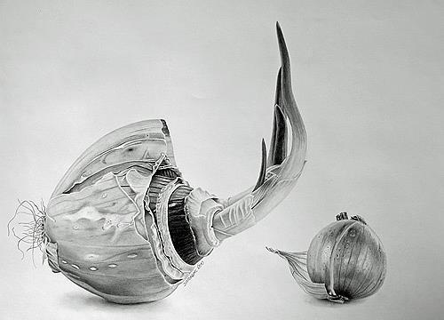 Dietrich Moravec, Mit letzter Kraft, Harvest, Plants: Fruits, Photo-Realism, Expressionism