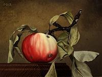 D. Moravec, Apfel in vollem Ornat