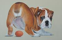 Dietrich-Moravec-Animals-Land-Humor-Modern-Age-Photo-Realism-Hyperrealism