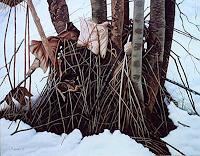 Dietrich-Moravec-Landscapes-Winter-Nature-Wood-Modern-Age-Photo-Realism