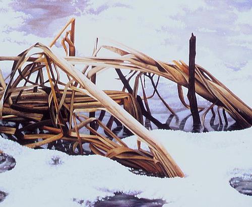 Dietrich Moravec, Binsen im Eis, Nature: Water, Landscapes: Winter, Hyperrealism, Expressionism