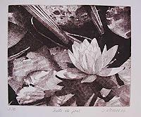 Dietrich-Moravec-Nature-Water-Plants-Flowers-Modern-Age-Naturalism
