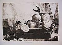 Dietrich-Moravec-Still-life-Plants-Fruits-Modern-Age-Naturalism