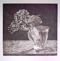 Dietrich-Moravec-Still-life-Plants-Flowers-Modern-Age-Naturalism