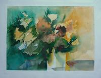 Petra-Traenkner-Plants-Flowers