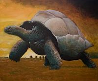 Hinrich-van-Huelsen-Animals-Land-Landscapes-Plains-Contemporary-Art-Post-Surrealism