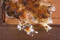 Reiner-Poser-Abstract-art-Modern-Age-Conceptual-Art