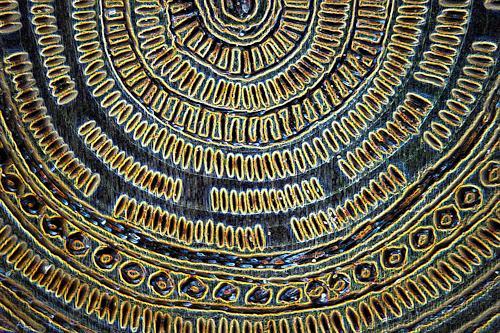 Reiner Poser, Das Amulett der Inkas, Symbol, Symbolism