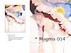M. Koenig, MAGMA 014