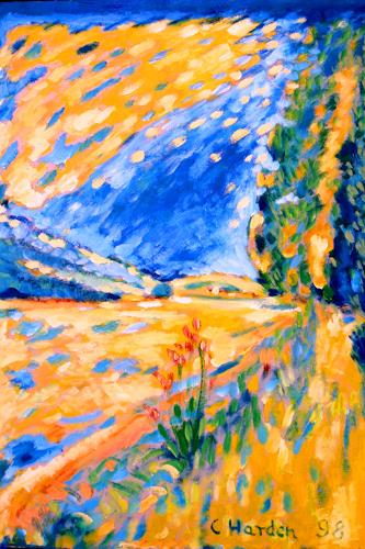 Christophorus Hardenbicker, Gardeweg 1998, Landscapes: Summer, Impressionism