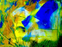 Agnes-Vonhoegen-Miscellaneous-Plants-Landscapes-Summer-Modern-Age-Abstract-Art