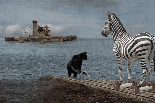 Pascale Turrek, zebrainsel, Miscellaneous Animals, Animals: Land, Surrealism, Expressionism