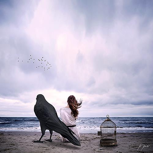 YAPIZO - Michael Maier, Free bird, Fantasy, Emotions, Post-Surrealism, Expressionism