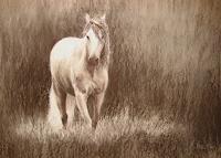 Sabina-Haas-Animals-Land-Movement-Contemporary-Art-Contemporary-Art