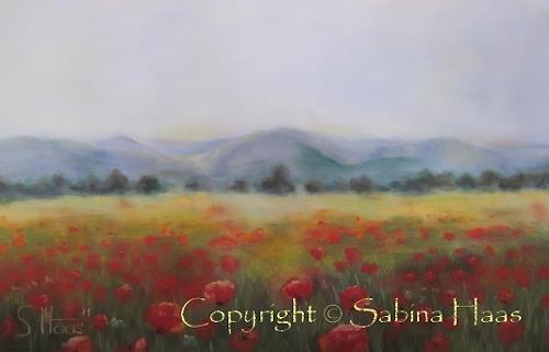 Sabina Haas, Mohnblumenfeld, Plants: Flowers, Landscapes: Plains