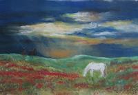 Sabina-Haas-Animals-Land-Landscapes-Plains