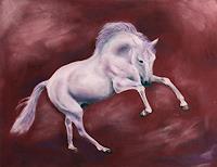 Sabina-Haas-Animals-Land-Contemporary-Art-Contemporary-Art