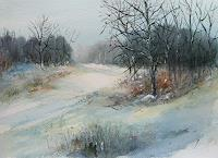 Petra-Ackermann-Landscapes-Winter-Nature-Wood-Contemporary-Art-Contemporary-Art