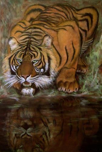 Amigold, Sumatratiger, Animals: Land