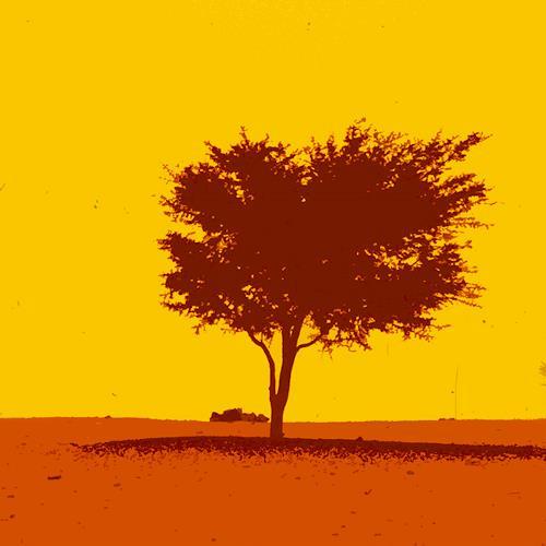 Miriam Stone, sahara, Landscapes: Summer, Poetry, Pop-Art