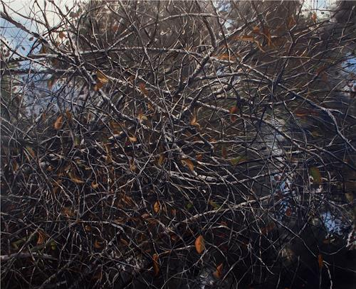 michael carroll, Intertwined, Miscellaneous Landscapes, Contemporary Art, Abstract Expressionism