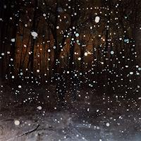 Jennifer-Walton-Landscapes-Winter-Miscellaneous-People-Modern-Times-Realism