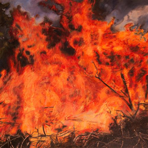 Jennifer Walton, Conflagration, Nature: Fire, Landscapes: Summer, Realism, Abstract Expressionism