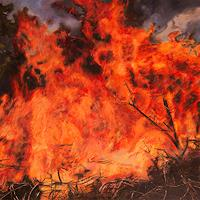 Jennifer-Walton-Nature-Fire-Landscapes-Summer-Modern-Times-Realism