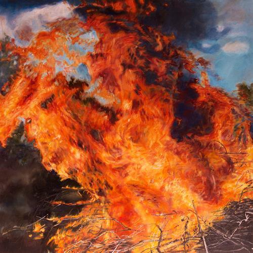 Jennifer Walton, Blaze, Nature: Fire, Landscapes: Summer, Contemporary Art, Abstract Expressionism