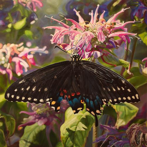 Jennifer Walton, Black swallowtail, Plants: Flowers, Animals: Air, Contemporary Art, Expressionism