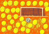 J. CHEVASSUS-AGNES, FOOTBALL