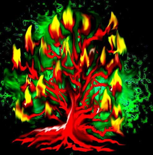 Evelin König, flammender Baum, Miscellaneous