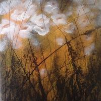 Carmen-Kroese-Plants-Flowers-Nature-Earth-Contemporary-Art-Contemporary-Art