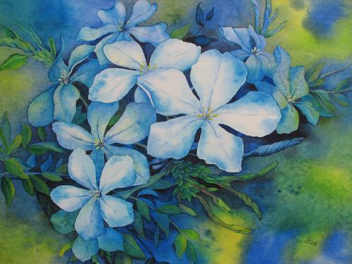 Kerstin Birk, Bleiwurz, Plants: Flowers, Still life, Realism, Expressionism