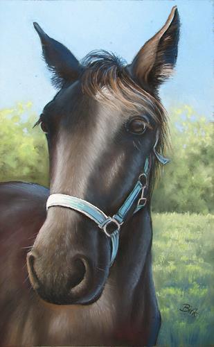 Kerstin Birk, Porträt eines Pferdes, Animals: Land, Miscellaneous Animals, Realism, Expressionism