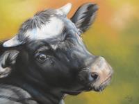 Kerstin-Birk-Animals-Land-Miscellaneous-Animals-Modern-Times-Realism